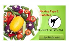 Kicking Type 2 Diabetes review